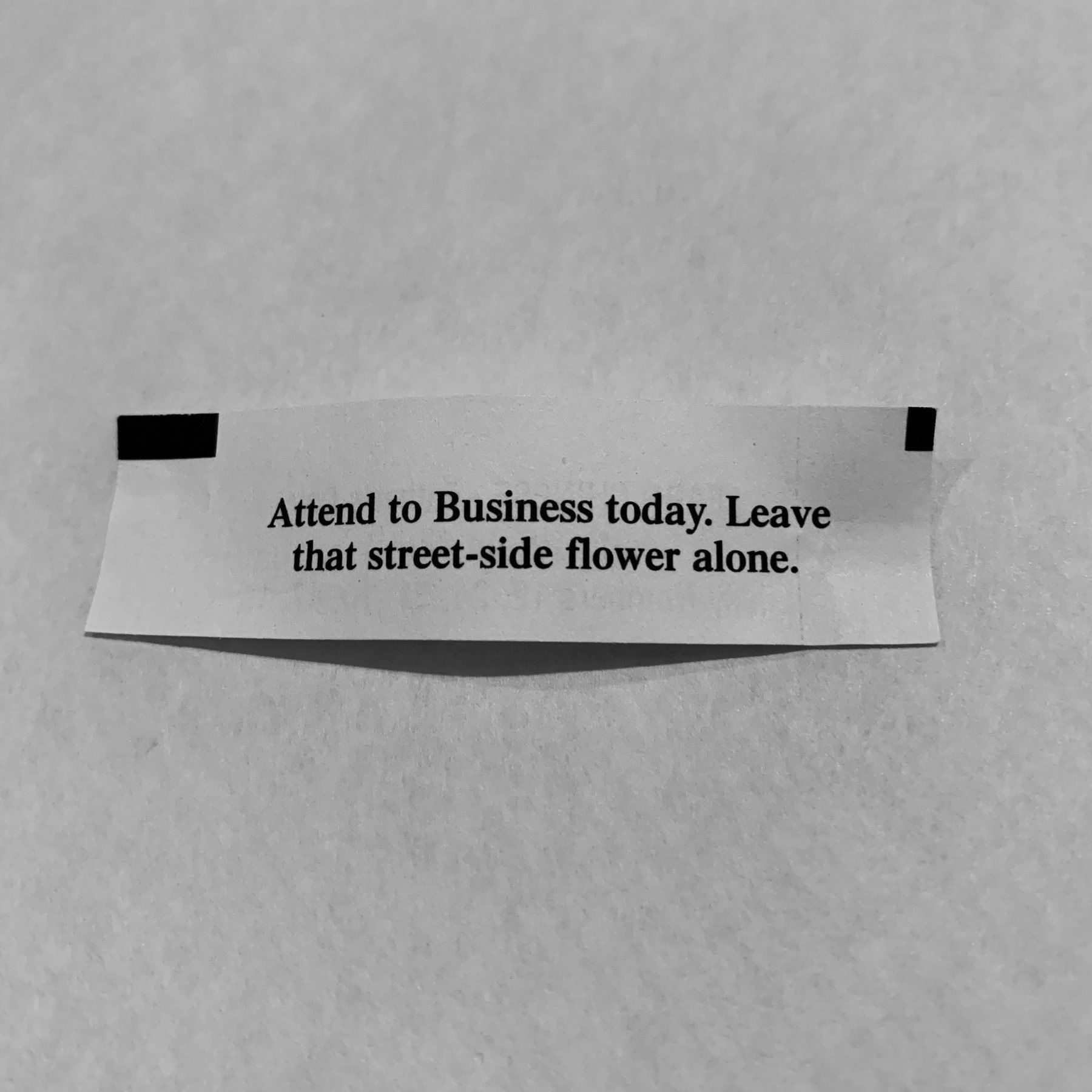 Fortune reading 'Attend to Business today. leave that street-side flower alone.'